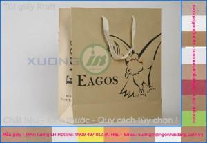 Hình túi giấy kraft carton chất lượng