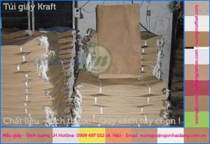 Cung cấp túi giấy bảo vệ môi trường